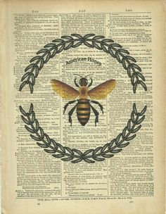 The Beekeepers Apprentice Epub