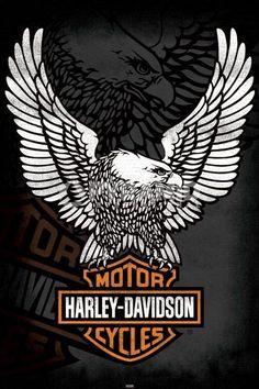 harley davidson quotes   Harley Davidson (Eagle) Poster