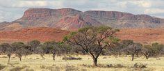 namibian desert - Google 検索