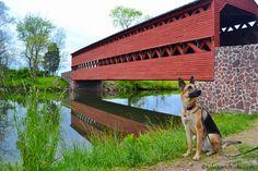 Morgan, Gettysburg, PA - 2 of my loves, covered bridges & german shepherds