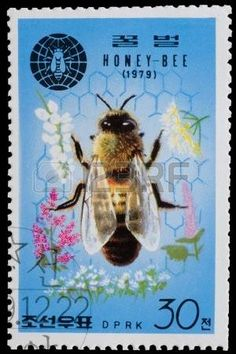 North Korea stamp 1979 acknowledging the importance of the Honey Bee in this set of 4.  These days I eat more honey than in the past..presently eating Austrian honey which is very good.  AM