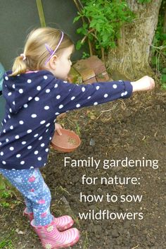 Give nature a home in your garden with these easy step-by-step guide to sowing wildflowers - perfect for a family nature activity.