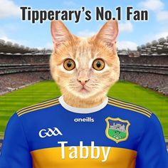 Add yoiur own pet and text to this design. Your pet in the Tipperary GAA county colours in front of Croke Park crowd. Design your Tipperary pet portrait online and you'll get a beautiful framed ceramic art.  Design yours today at  www.pictureparcel.com Croke Park, Picture Stand, Female Portrait, Pet Portraits, Ceramic Art, Crowd, Your Pet, Pop Culture, Colours