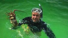 Florida lobster season is Aug. 6-March 31, and one of the Sunshine State's biggest lobster destinations is Islamorada in the Florida Keys. Get your very own lobster crash course as Mark Poetz, a longtime fishing guide in the Florida Keys, teaches Chad Crawford all about the legal requirements, the diver's tools and smart fishing techniques.