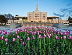 Idaho Falls LDS temple ~ It's Beautiful! I love the fountain since the remodel!