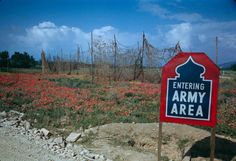 Liri Valley, on the road to Rome, 1944  Read more: World War II in Color: The Italian Campaign and the Road to Rome, 1944 | LIFE.com http://life.time.com/history/world-war-ii-in-color-photos-italian-campaign/#ixzz3Q23xajtQ