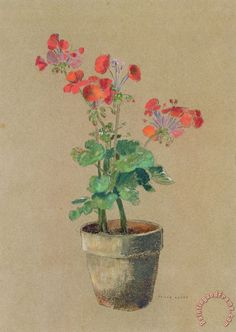 Geraniums In A Pot Painting by Odilon Redon