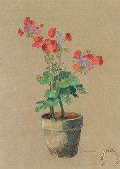 'Geraniums in a pot' - Odilon Redon