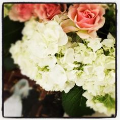 Learn about the most beautiful, hardy hydrangeas available. Endless Summer hydrangeas provide endless color and blooms all season long, year after year. Endless Summer Hydrangea, Hydrangea Not Blooming, Blushing Bride Hydrangea, Wedding Bouquets, Wedding Flowers, Hydrangea Varieties, Dream Garden, Perfect Wedding, Flower Arrangements
