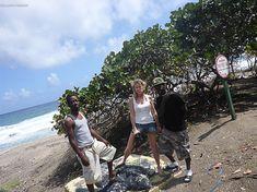 Exploring the Turtle Conservation program  St. Eustatius