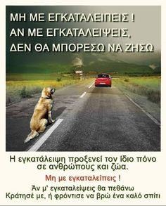 Kindness To Animals, Greek Quotes, Animals And Pets, Qoutes, Dog Lovers, Have Fun, Wolf, Best Friends, Lyrics