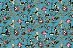 Bugs & Butterflies Blue