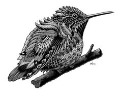 Hummingbird Art Print by BioWorkZ