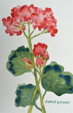 Resultat d'imatges per a easy watercolor paintings for beginners
