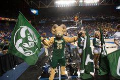 Colorado State University Basketball by ColoradoStateUniversity, via Flickr