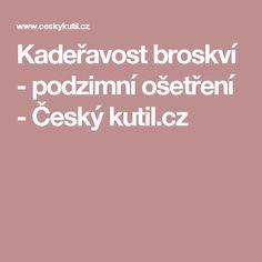 Kadeřavost broskví - podzimní ošetření - Český kutil.cz