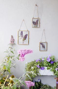 Kreative DIY Idee zum Selbermachen: DIY Blumen pressen - Bilderrahmen mit gepresstem Flieder als kreative Balkondeko