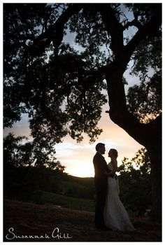 Susannah Gill Photography - Arista Winery Wedding   Laura & Kyle 2014