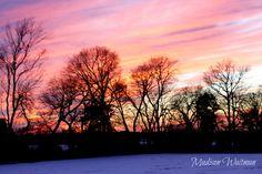 Winter <3...Madison Waitman Photography