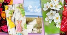 Entdecken Sie in unserem #Blog die vielfältigen Anwendungsmöglichkeiten von #Bannern, die Ihnen dabei helfen ihre #Dekoration, zu jeder #Saison ,richtig in Szene zu setzen. Egal ob #Frühling, #Ostern, #Strand oder #Party hier finden sie den passenden #Banner zu ihrem Thema! http://dekowoerner.blogspot.de/2017/03/blickfange-im-hintergrund.html