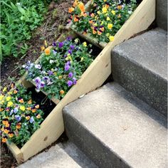 Wooden Flower Boxes-- beside the steps. Just dig a hole and put in the box, then plant your flowers(: