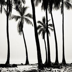 Josef Hoflehner Photographer   Hawaii