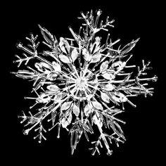 氷の結晶 - Google 検索