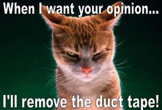 When I want your opinion... I'll remove the duct tape!