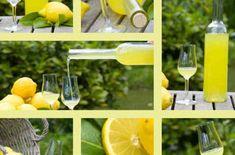 limoncello kopen