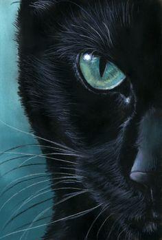black Cat Portrait - Turquoise Eyes by art-it-art. on - Artistic cats - Katzen / Cat I Love Cats, Crazy Cats, Cute Cats, Art It, Deviantart, Black Cat Art, Black Cats, Black Cat Painting, Black Cat Drawing