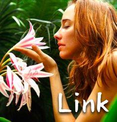 pslinkのブログ