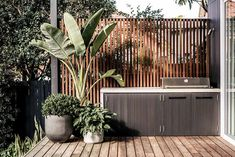 The built-in BBQ with a polished concrete bench top is set in front of a vertical Spotted Gum screen with copper spaces were used to separate the batons. built-in BBQ with a polished concrete bench top is set in front of a vertical Spotted Gum screen with Outdoor Areas, Outdoor Rooms, Outdoor Living, Outdoor Decor, Outdoor Lounge, Outdoor Plants, Outdoor Bbq Kitchen, Outdoor Kitchen Design, Outdoor Cooking