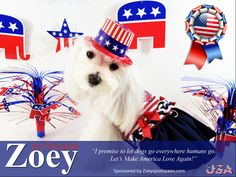 Vote Zoey for President