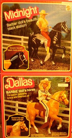 I had Dallas.  Erika had Midnight.  My horse had to be put down after breaking two legs and an ear.  It was a nasty trip down the stairs.