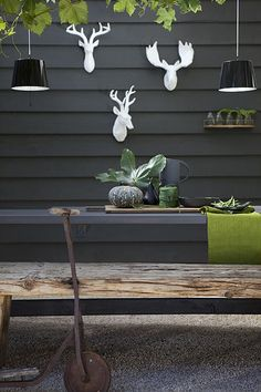 Grey shed, grey bench, lime accents and white stag heads. Pretty cool garden.