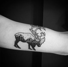 Elk by Daniel Matsumoto