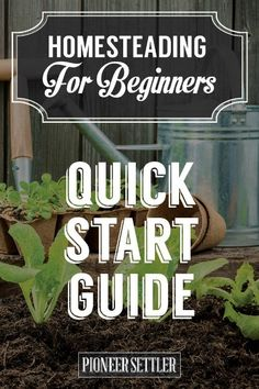 The option to start a homestead to be more self-sufficient opens a lot of doors. One thing for beginners to do is to use a homesteading quick start guide.