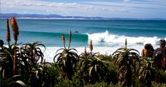 Eastern Cape province of South Africa. Awesome surfing during the winter months of June, July and August. Supertubes beach hosts the annual Billabong Pro WCT surfing event in July.