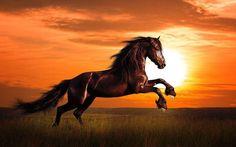 Stunning Photo