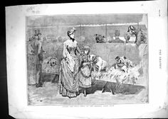 Print 1886 Bull Dogs Kennel Club Show Owners Pets Animals. Pinned by Judi Crowe.