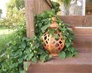 Hops- vigorous vines with fragrant little buds. Just look pretty or harvest to use in home-brewed beer. Beer Garden, Garden Art, Garden Ideas, Hops Trellis, Hops Vine, Garden Awning, Little Buds, Home Brewing, Brewing Beer
