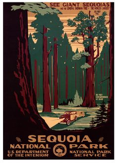 Sequoia (Kings Canyon) National Park - US Travel Bureau Poster - WPA Posters / Prints - Ranger Doug's Enterprises; Sequoia National Park, National Parks, National Forest, Vintage National Park Posters, Voyage Usa, Wpa Posters, Retro Posters, Movie Posters, Pub Vintage
