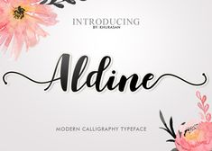 Download Aldine now on Creative Fabrica. Get unlimited access to high quality design resources and start right away.