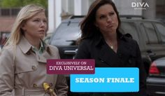 Law & Order: Special Victims Unit season 14 | divauniversal.asia