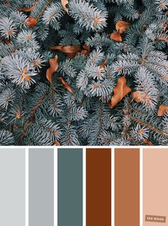 Pretty Winter Colour Schemes { Grey + Pine + Brown } A pretty colour palette. To get you started on your own palette, we've created over 100 beautiful colour palettes with versatile colour schemes you can take inspiration from. Color Schemes Colour Palettes, Brown Color Schemes, Green Colour Palette, Living Room Color Schemes, Brown Color Palettes, Winter Color Palettes, Decorating Color Schemes, Grey Living Room Ideas Colour Palettes, Bathroom Color Schemes Brown
