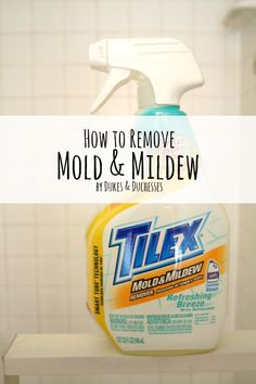 How To Remove Mold And Mildew Ad Tilex