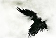 Original Charcoal Crow Drawing Flying raven Large Gothic Art 27''x40'' CUSTOM MADE