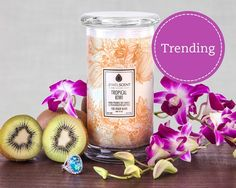 Go back to your favorite tropical destination with the delicious scent of kiwi and exotic tropical floral.  Each Classic Candle contains 16oz of wax in a 20oz glass. These candles contain one mystery ring valued at $10 to $7,500 Scented Candles, Candle Jars, Candle Rings, Jewelry Candles, Soy Candles, Tropical Candles, Tropical Flowers, Aroma Beads, Classic Candles