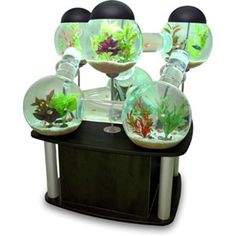 Labyrinth Aquarium | DudeIWantThat.com