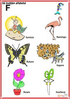 coin images representing letters of the alphabet Car Design Sketch, Alphabet, Kindergarten, Homeschool, Coins, Crafts, Image, Baby, Script Alphabet